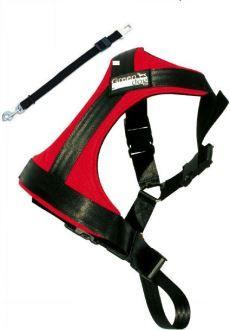 GreenDog Safety belt M red